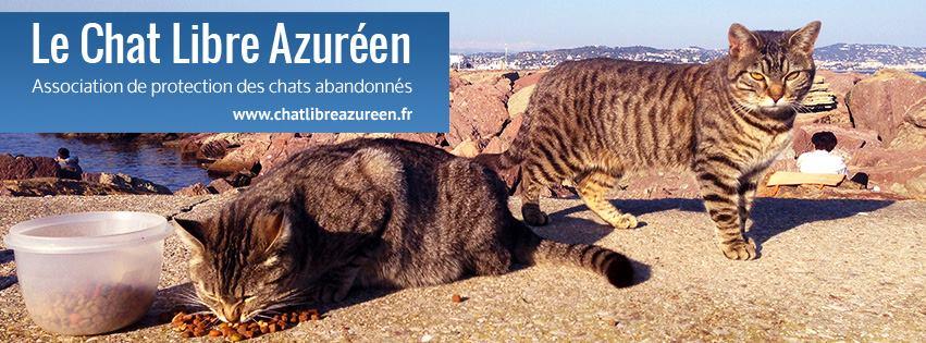 BESOIN DE NOURRICIERS à Mouans-Sartoux